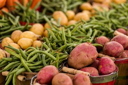 How to source sustainable produce for your restaurant